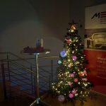 Tannenbaum im neuen Büro in Niederkassel
